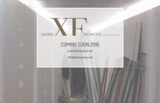 XF Proyectos. Galería Xavier Fiol