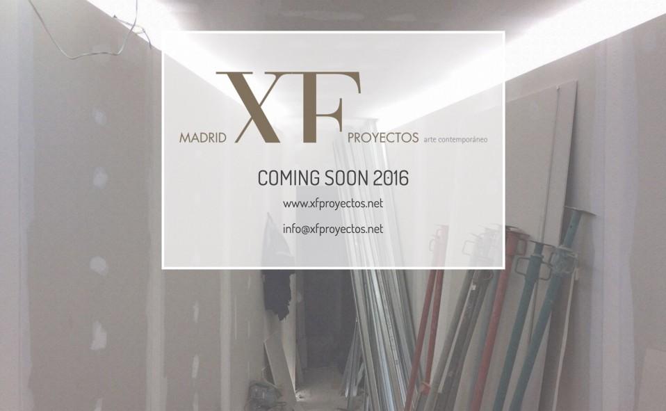 Madrid XF Proyectos. Galería Xavier Fiol