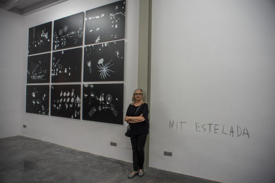 """ALARO XF. Exposición TERESA MATAS – VICENÇ OCHOA """"La Mirada abisal"""" agosto 2016. ALART 2016"""